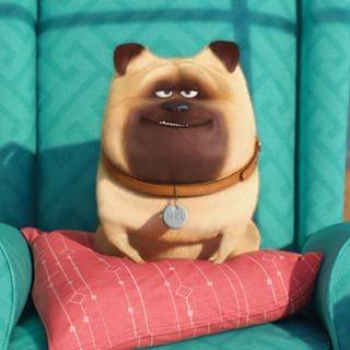 THE SECRET LIFE OF PETS | Universal Pictures Canada