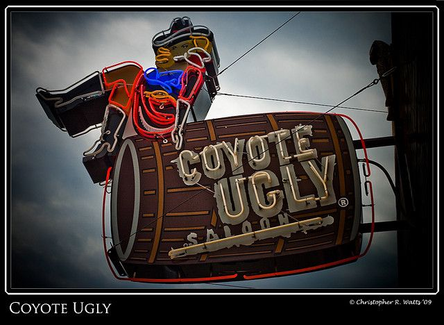 Coyote Ugly by Tofer Watts, Memphis Tennessee
