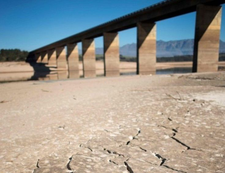 South Africa's Western Cape province has declared a drought disaster as it faces its worst water shortage in 113 years.