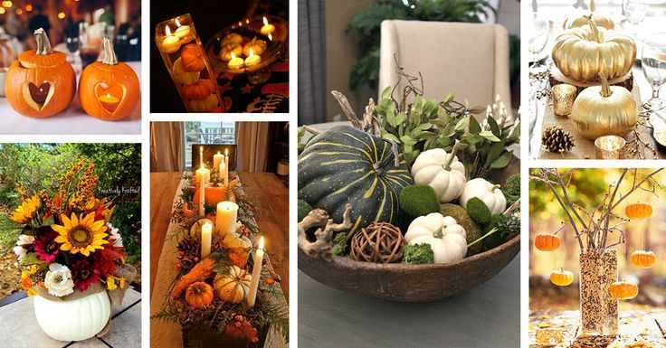 Pumpkin centerpiece ideas'll be your inspiration this Autumn. Add some cranberry vines, pine boughs, or cones for a contrast.Find the best designs!