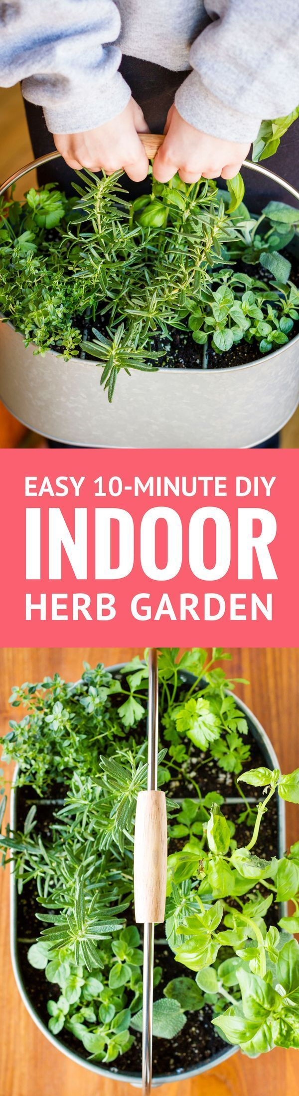 Easy Indoor Herb Garden -- I was an indoor container gardening failure, until I decided a different approach was in order. Find out how you can create this simple DIY indoor herb garden in under 10 minutes! | http://unsophisticook.com