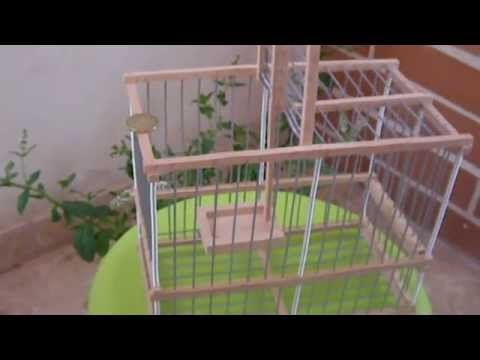 Cage pi ge moulinet multireprise oiseaux a vendre cage trap multireprise for sale youtube for Cages a oiseaux decoratives