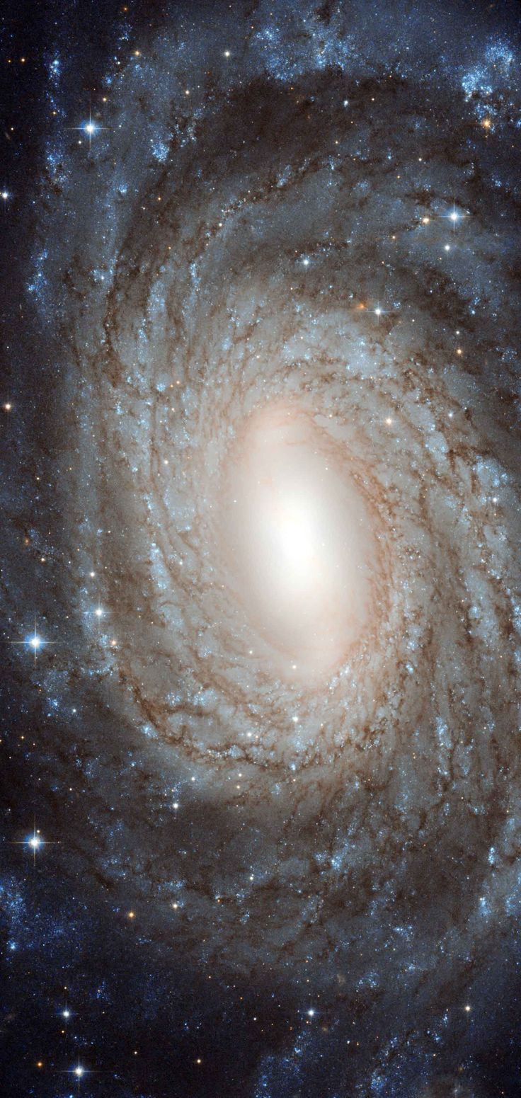 The universe is filled with galaxies. But to see them astronomers must look out beyond the stars of our own galaxy, the Milky Way. This colorful Hubble Space Telescopic portrait features spiral galaxy NGC 6384, about 80 million light-years away in the direction of the constellation Ophiuchus.