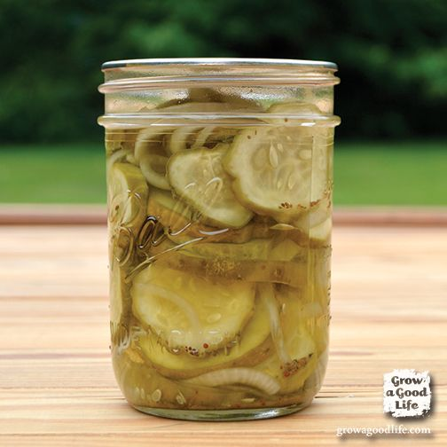Granny's Bread and Butter Pickles recipe won me over. If you know someone who doesn't like pickles, this recipe may just convert them.