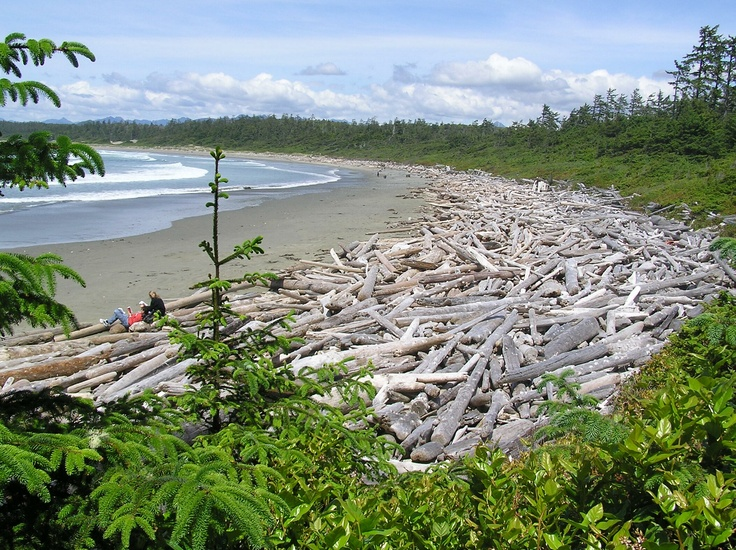 Pacific Rim National Park - British Columbia ....a place of peace for me