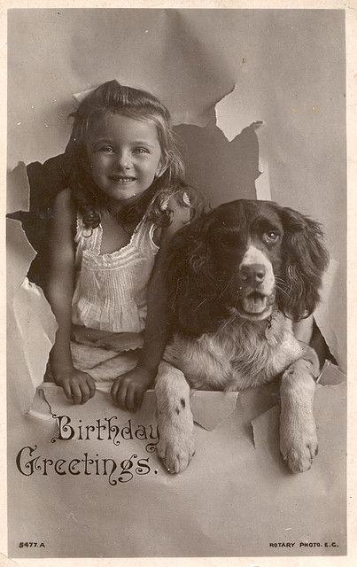 vintage dog photo