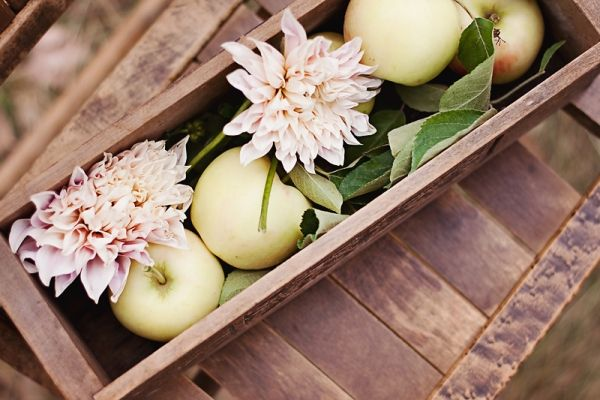Fruit.: Weddings, Blossom Designs, Pretty Pastel, Lemon Blossom, Fruit Displays, Blossoms