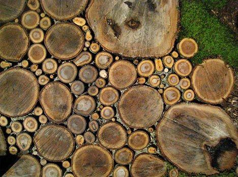 Contribute !  Widget ! Facebook ! Twitter ! iPhone App !  Sliced wood –> garden wood path