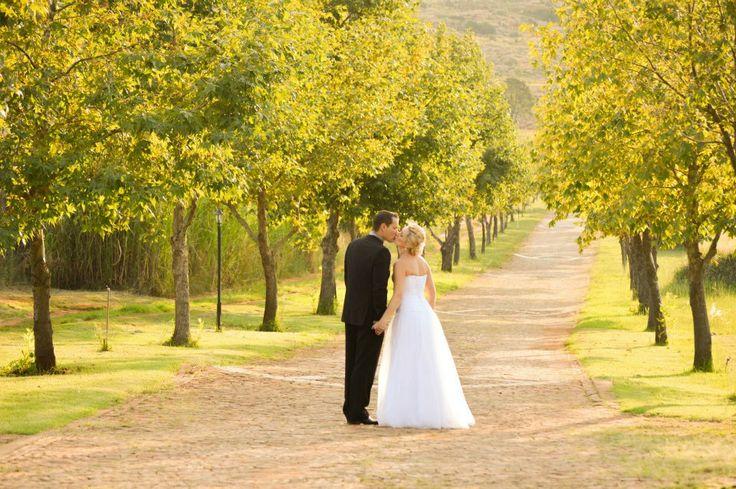 Entrance to our wedding venue (pretoria) Casa-lee