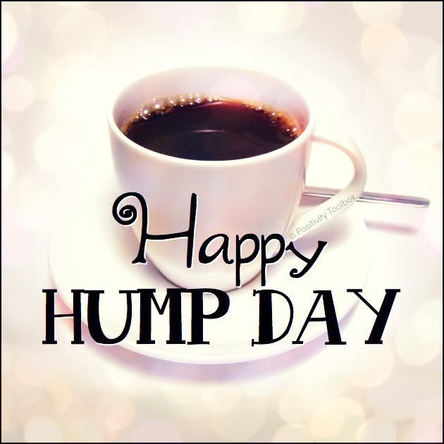 Best Hump Day Quotes