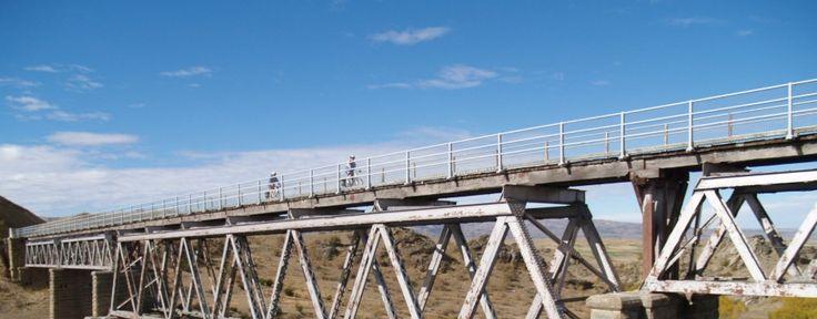shebikeshebikes location de vélo pour parcourir le Otago central rail trail