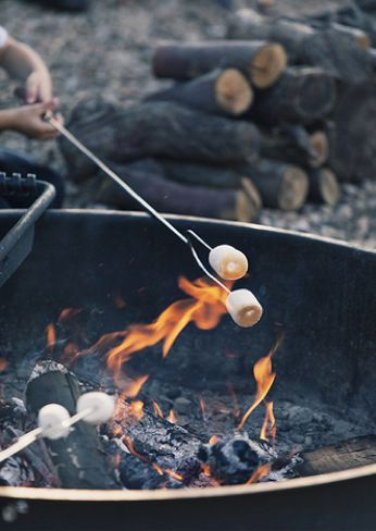 Marsh mellows over a camp fire. Forest, Socal hiking, Appalachian trail, Pacific Crest trail, camping the woods.