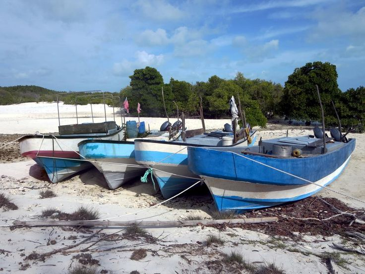 The occupants of these Madagascar boats were apprehended fishing illegally off Aldabra Atoll in the Seychelles. The confiscated vessels are currently being held at La Gigi on Picard Island.
