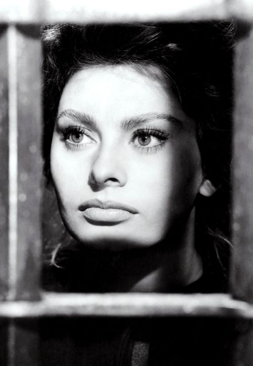 Sophia Loren My sister Gisele could have been her twin sister...Beautyfull...Andrée...