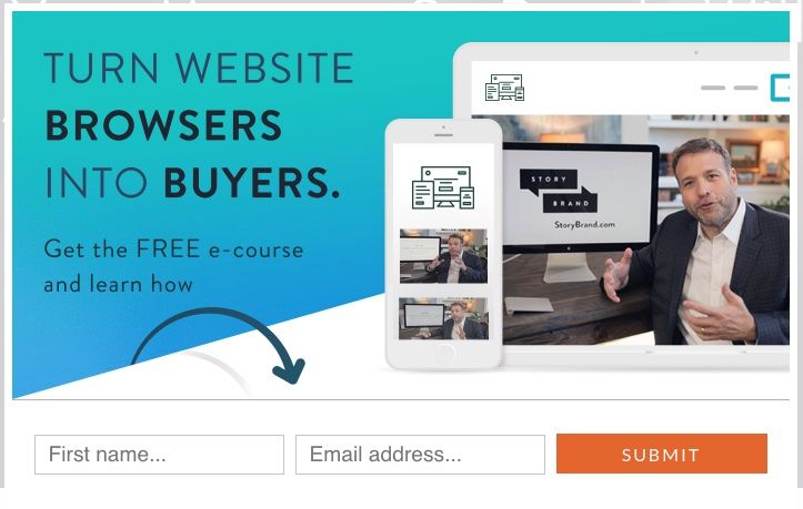 Optin for Turn Website Browsers into Buyers - Storybrand