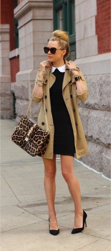 Black w/ White Collar Dress | Tan Peacoat | Leopard Print Purse | Black Heels