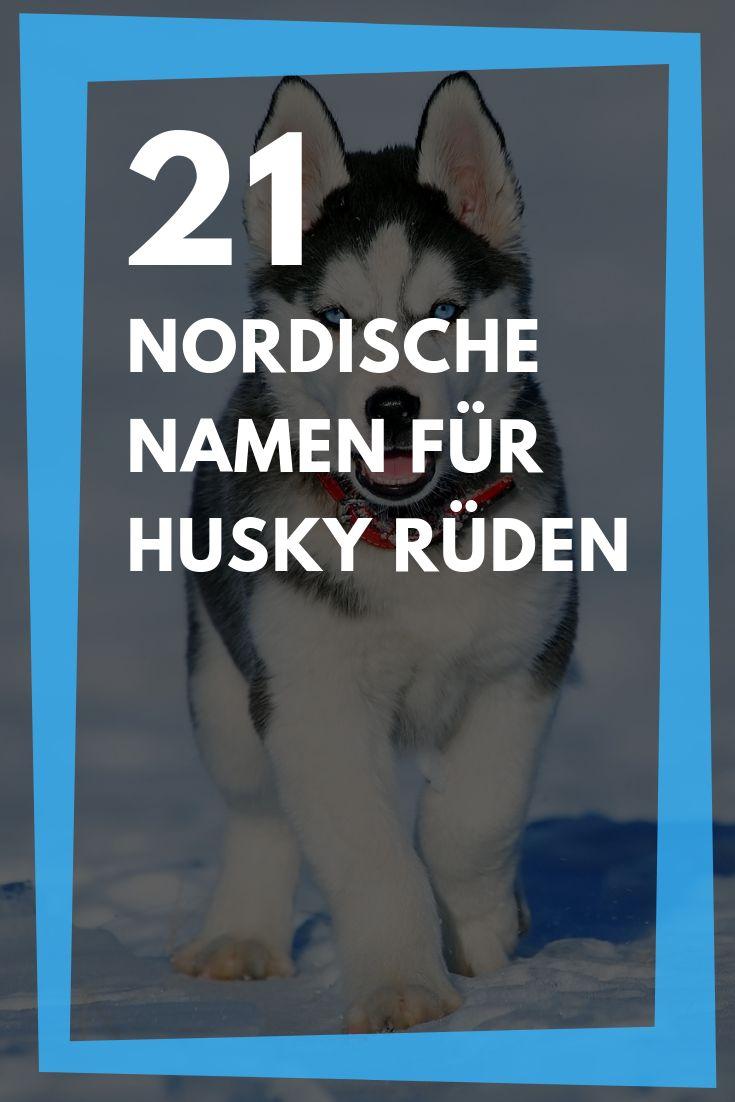 21 Hundenamen Fur Husky Ruden Nordische Namen Mit Bedeutung Hundenamen Nordische Namen Nordische Hundenamen