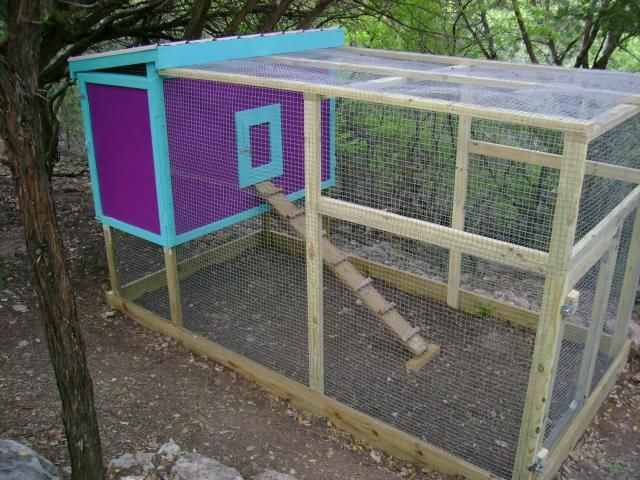 best 25 small chicken coops ideas on pinterest diy