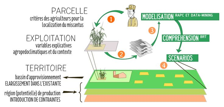 Where do farmers grow #miscanthus? #MachineLearning approach to model real criteria #LogistEC #farmer  learn more http://bit.ly/LogistEC_JBB