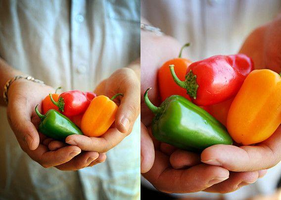 Mini-poivrons farcis. . La recette par La Cuisine de Josie.
