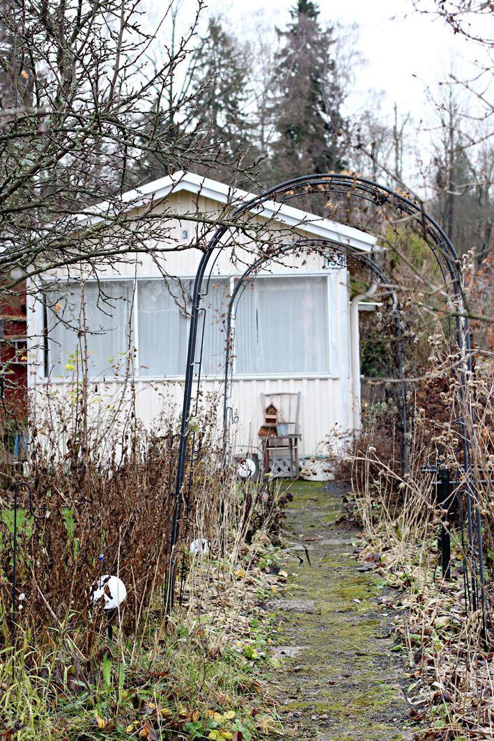 Oravankesäpesä | Marraskuu 2015.