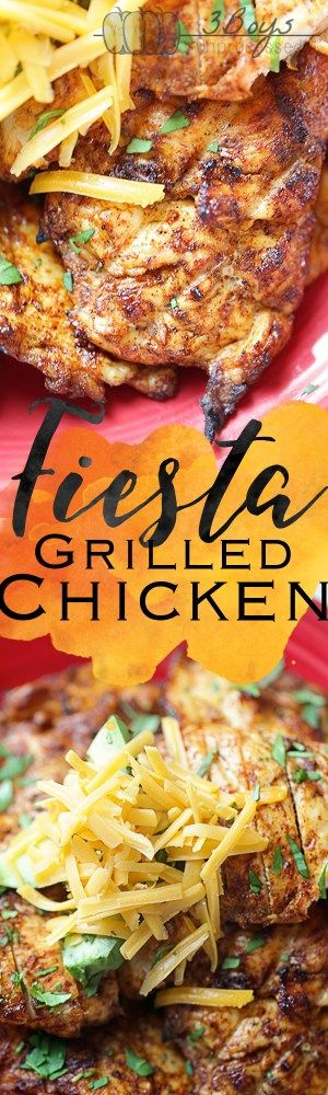 Fiesta Grilled Chicken || Perfectly grilled chicken coated in a ton of yummy spices and topped with cheese, fresh cilantro, and avocado. Summer time grilling at its finest!