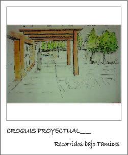 Imagen Proyectual