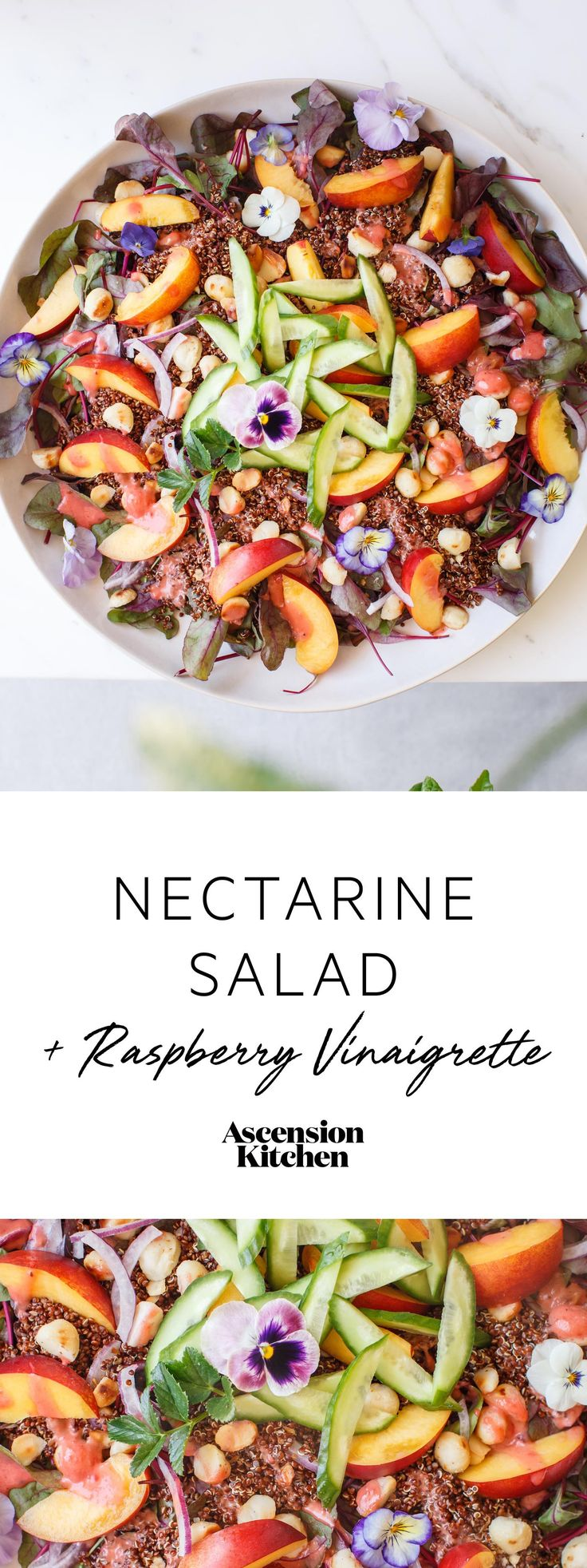 A simple Summer Nectarine Salad with Raspberry Balsamic Vinaigrette. Naturally gluten free, plant-based.   Easy summer salad recipe, vegan salad recipe, gluten free salad recipe, nectarine salad, raspberry dressing. #vegansalad #summersalad  // Repin to your own inspiration board! //