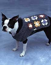 Doggie Duds - Granny Square