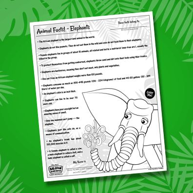 Download our free animal facts sheet, perfect for the child who loves to learn about animals! Inspired by the majestic elephant featured in the ABC Balloon Book, this fact sheet features interesting facts about…elephants! After your child reads (and probably memorizes) the facts, they can color in the elephant and even choose it's name.