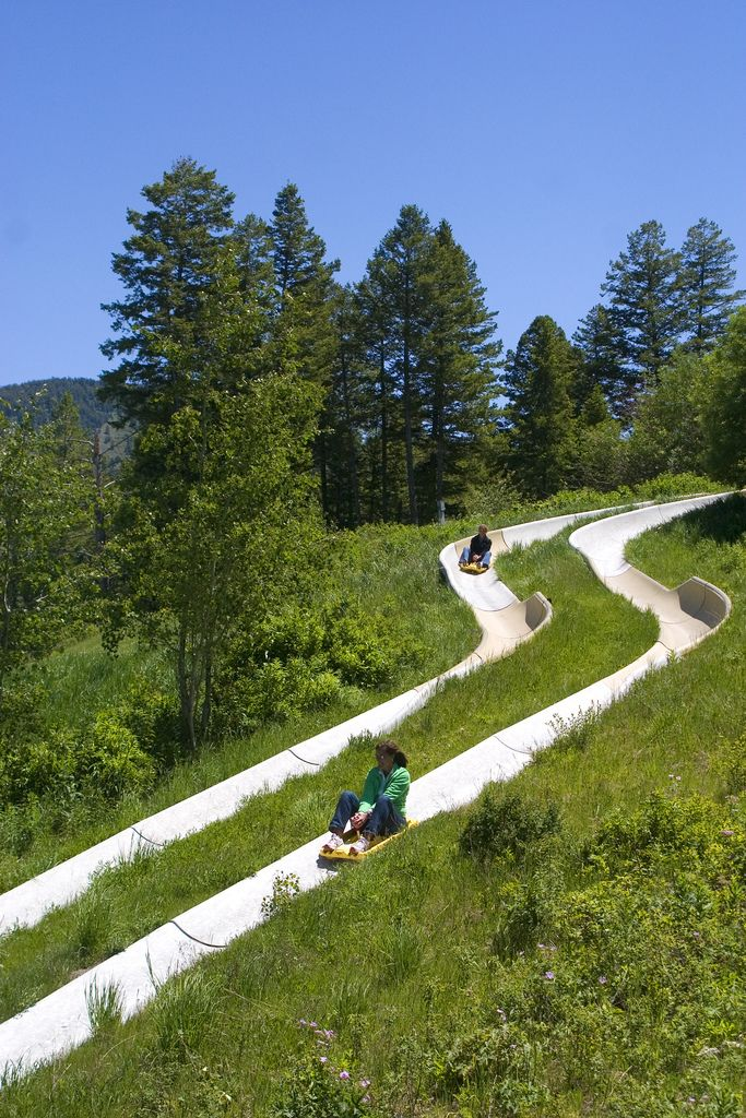 Alpine Slide at Snow King in Jackson Hole - An Exhilarating Slide Down Snow King Mountain...Fun For All! www.snowkingjacksonhole.com/summer/things_to_do_jh/alpine_slide/ Local 307.733.5200