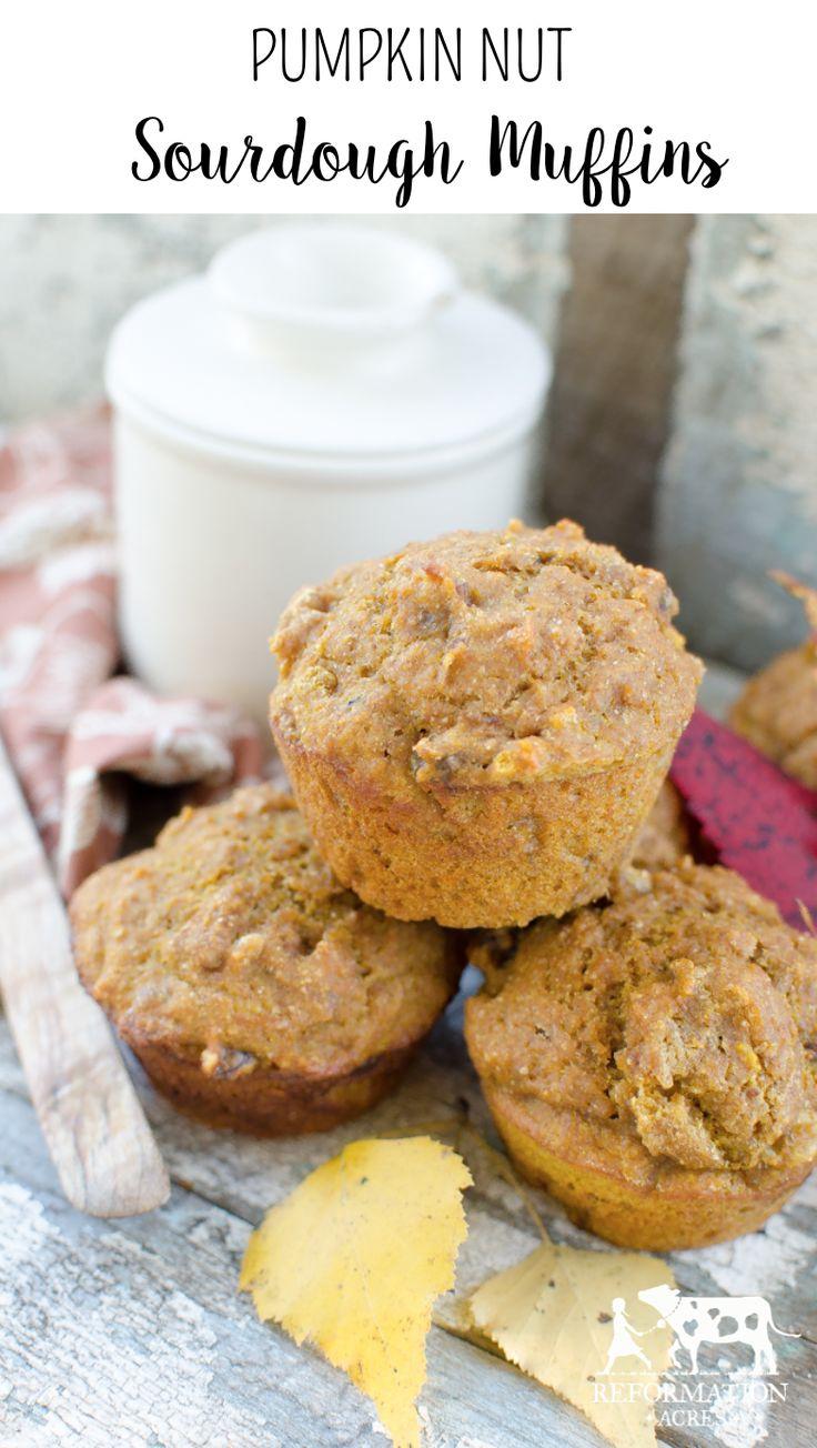 Pumpkin Nut Sourdough Muffins~ | Recipe | Pumpkins and Muffins