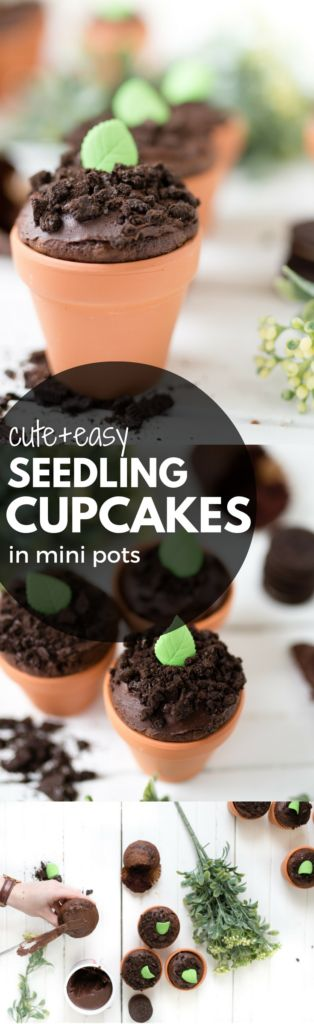these adorable seedling dirt cupcakes double as decoration and are so fun for kids to decorate