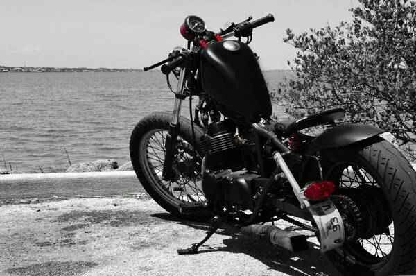 Honda rebel 250- custom bobber