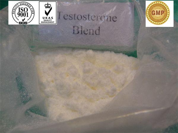 No Side Effects Positive Sustanon 250 Testosterone Steroid Hormone Powder CAS 58-22-0 - China xed testosterone;sustanon;Sustanon 250, NJ