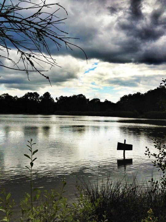 Lac en Sologne