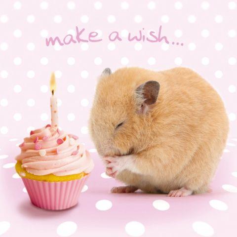Kartka urodzinowa Make A Wish