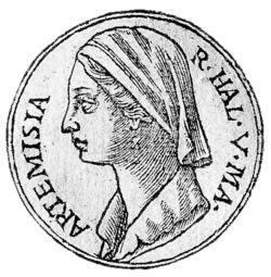 This amazing woman fought at the naval Battle of Artemisium and also the naval Battle of Salamis as a commander in the Persian navy. She was he only female commander. She was known for her decisiveness and intelligence, so much so that after the Battle of Salamis, Xerxes acknowledged her by sending her a complete suit of Greek armor for excelling above all the officers in the fleet.