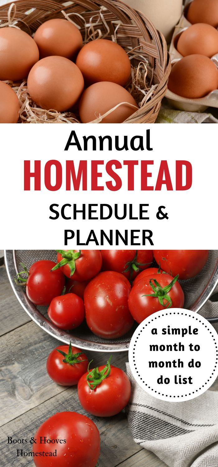 Annual Homestead Schedule & Planner. A simple month to month to do list.
