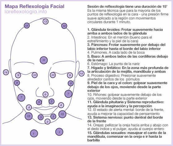 Mapa técnico reflexología facial