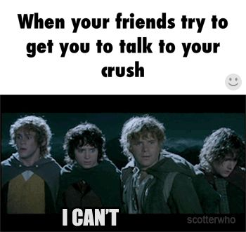 When your friends try to get you to talk to your crush :)