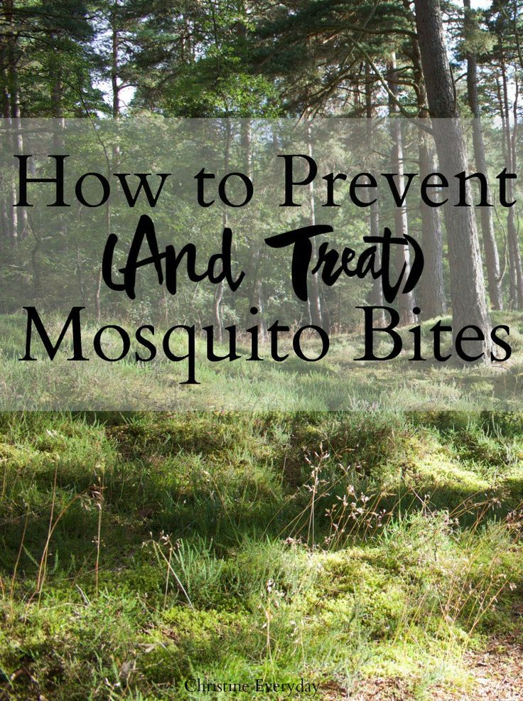How to Prevent (and Treat) Mosquito Bites - Christine Everyday
