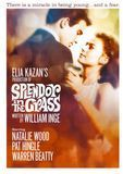 Splendor in the Grass [DVD] [1961]