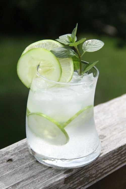 Best Ever Gin and Tonic (Mint-Basil, and Cucumber) — Dan330