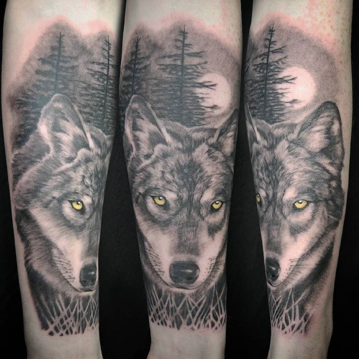 I used to bark at the moon but I'm alright noooowwww.. cheers @bradleyyyrose! #tattoo #blackandgreytattoo #brightontattoo #tattoos #wolftattoo #wolftattoos #realistictattoo @bluedragontattoobrighton #tattooartistmagazine #tattooenergy #totaltattoomagazine #skinshotsmagazine #inkedup #tattoosnob