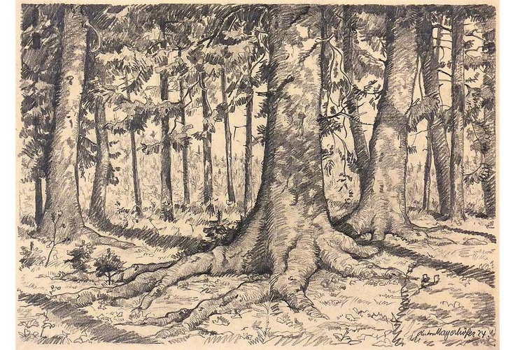 One Kings Lane - Decades of Drawings - Forest Drawing, 1924