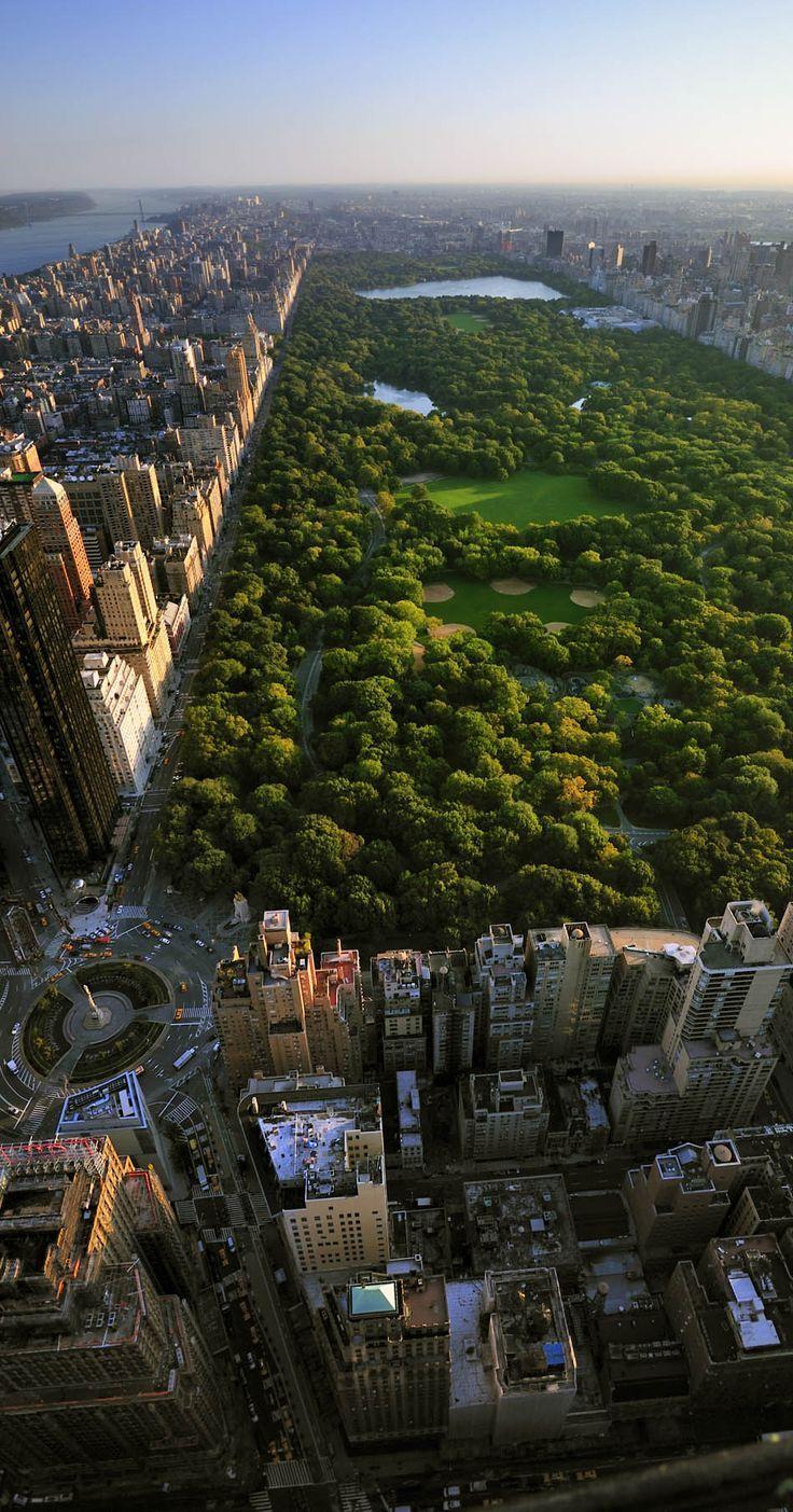 concrete jungle where dreams are made of : Photo