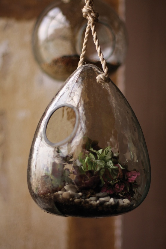 Recycled Glass Teardrop Glass Hanging Birdhouse and Terrarium.