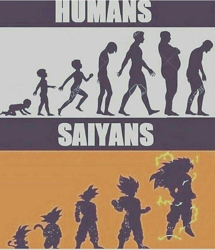 Humanos e sayajins