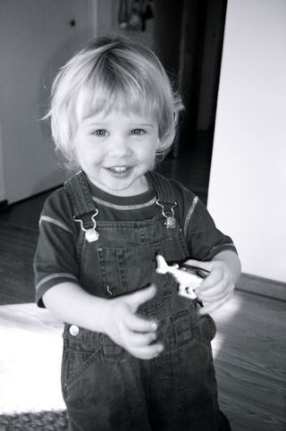 BEST HOME ECONOMICS ASSIGNMENTS: Your personal child development project
